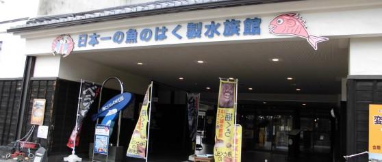 『魚の絵コンテスト』7/16(土曜日)~8/31(水曜日)@海とくらしの史料館
